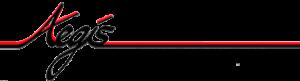 aegis industrial camera logo-latest